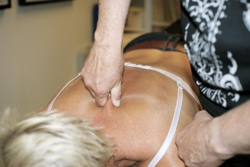 terapeut-kurs-fasciamanipulering